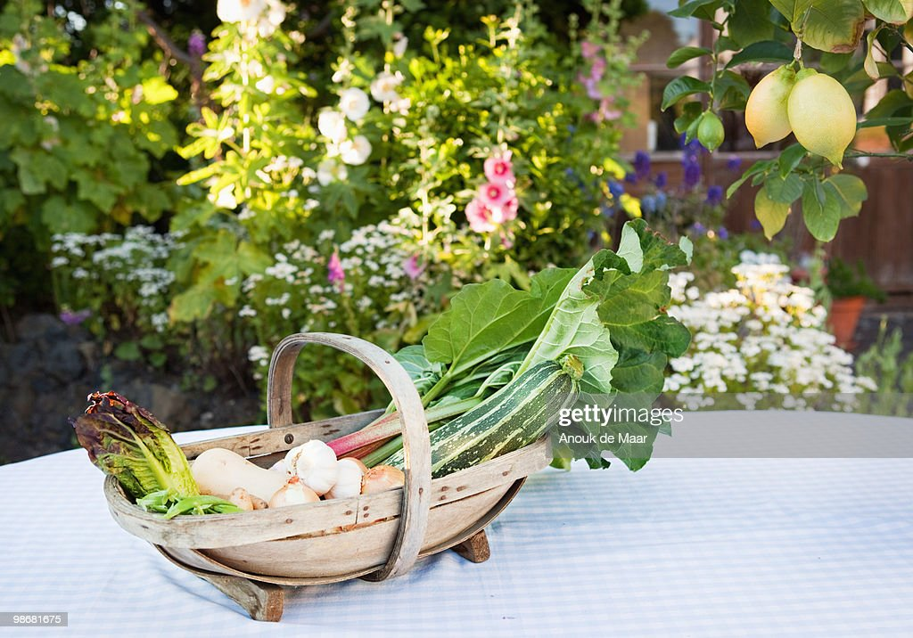 basket with fresh vegetables on table. : Stock Photo