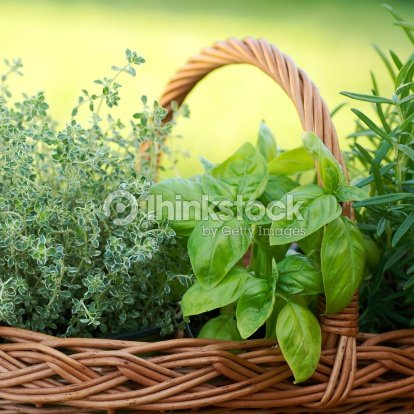 Basket with herbs : Stock Photo