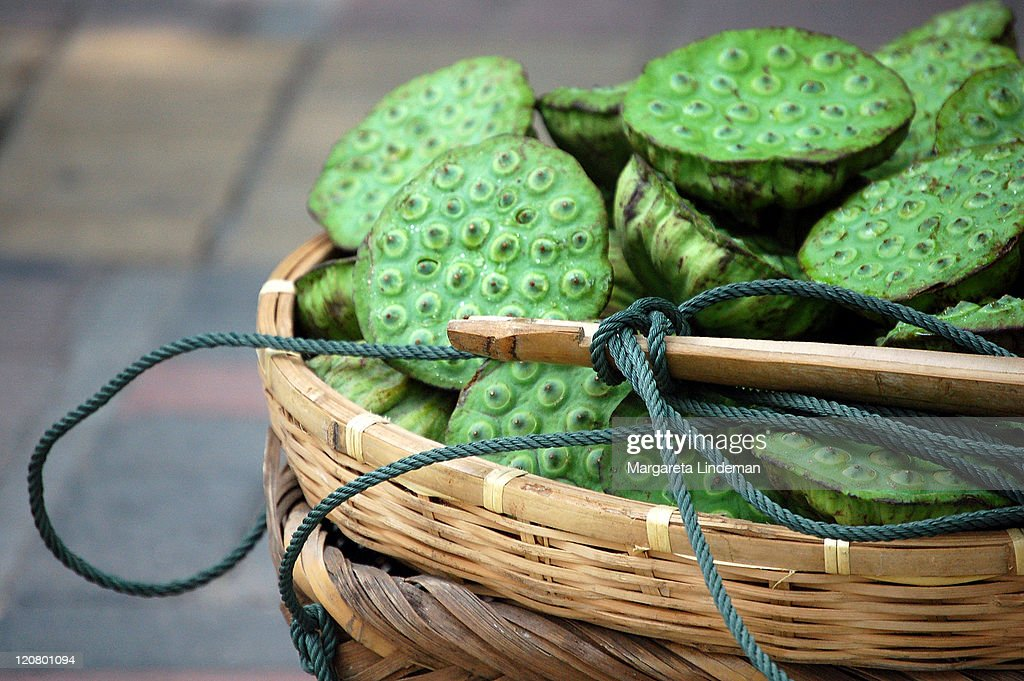 Basketful of lotus seed pods : Stock Photo