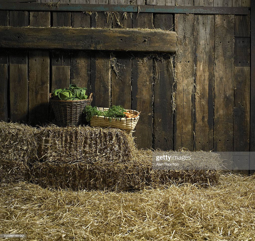 Baskets of cabbages and carrots on hay bales in barn : Stock Photo