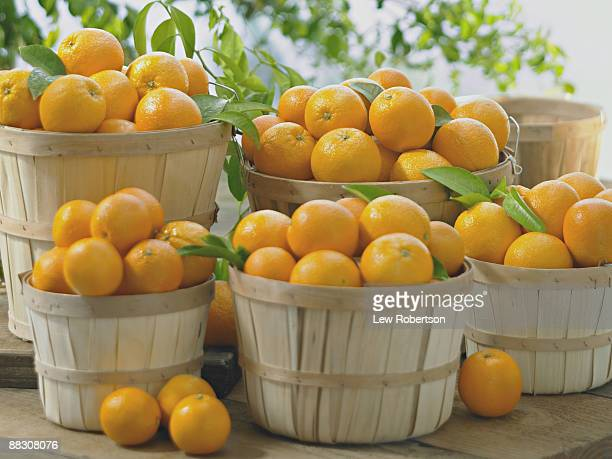 Baskets of Fresh Oranges