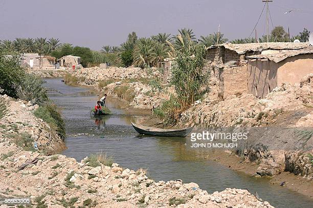 A Marsh Arab settlement in Abu al Muhammen just outside Basra in southern Iraq 16 October 2005 as millions of ballots are being counted all over the...