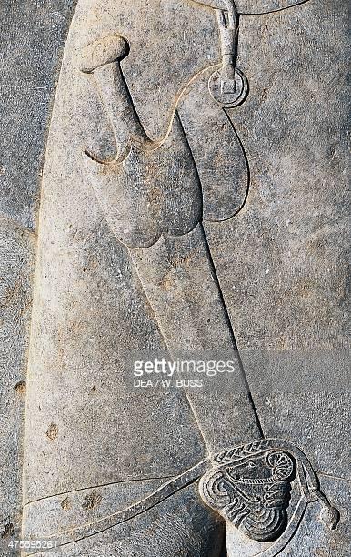 Basrelief of a nobleman detail Apadana Persepolis Iran Achaemenid civilisation 6th5th century BC Detail