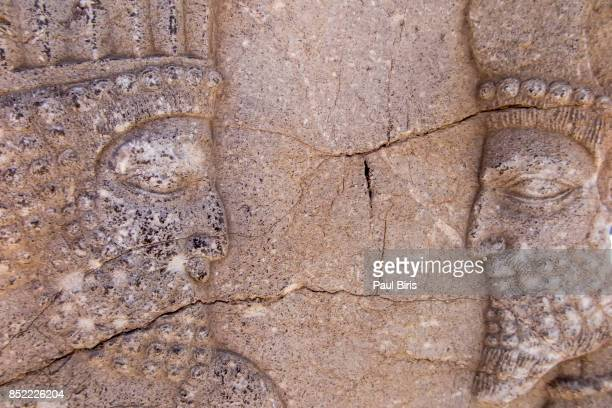 Bas-reliefs on the great staircase of Apadana Palace, Persepolis, Shiraz, Fars Province, Iran.