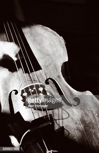 Bass : Stock Photo
