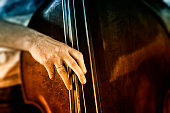 Close-up of double bass player
