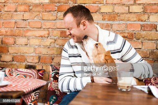 Bassett hound lick