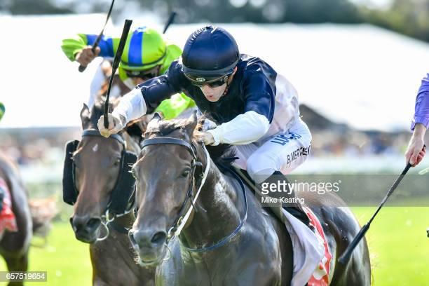 Bassett ridden by Beau Mertens wins the Ladbrokes Hareeba Stakes at Mornington Racecourse on March 25 2017 in Mornington Australia