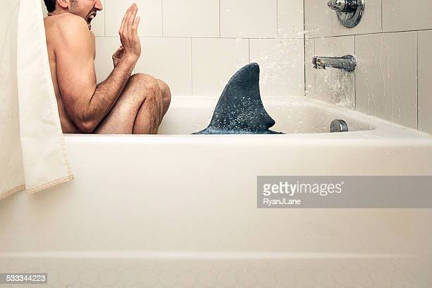 Bath Shark Attack