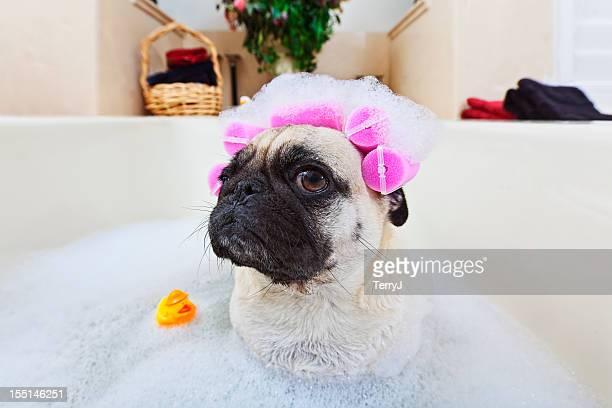 Die Zeit im Bad