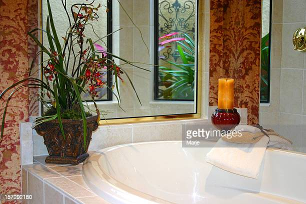 Bath with Garden View