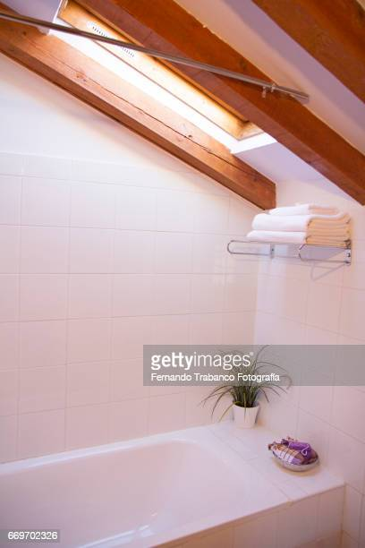 Bathroom with bathtub and window in the ceiling