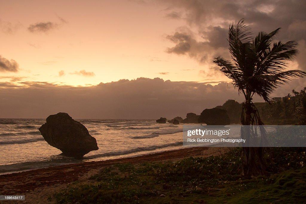 Bathsheba Beach, Barbados : Stock Photo