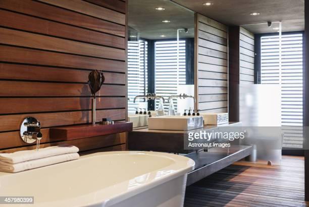 Baignoire et lavabo dans la salle de bains moderne