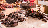 Bats at market in Indonesia, extreme market, Sulawesi