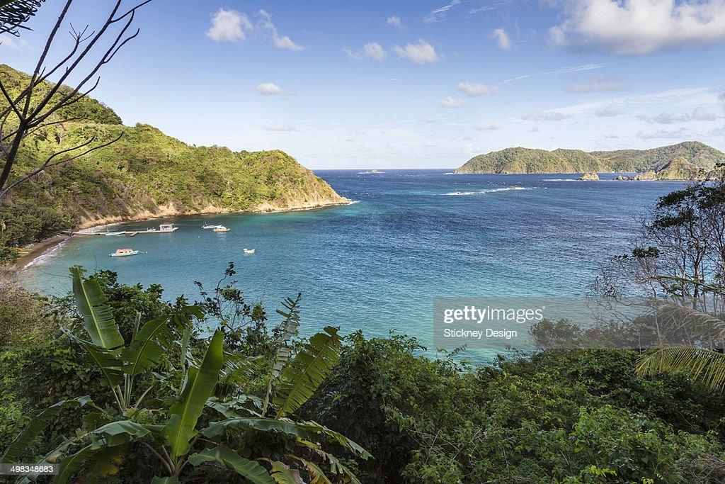 Batteaux Bay Tobago Caribbean island dive resort