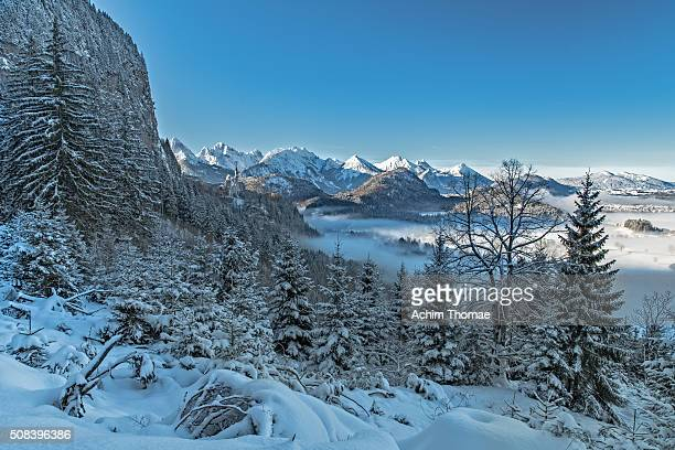 Bavarian Winter Landscape with a view to Neuschwanstein Castle