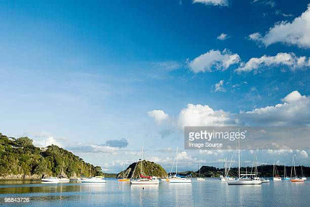 Bay of Islands, yachts in the bays near Kerikeri