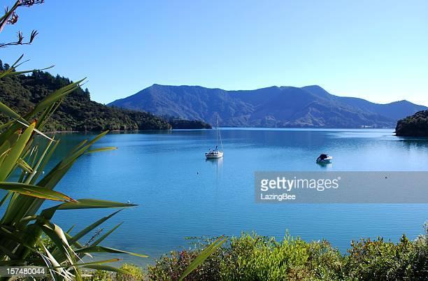 Bay on the Kenepuru Sound, Marlborough