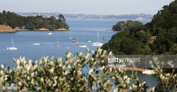 A bay on Waiheke Island which lies 5km east of residential Auckland May 11 Waiheke Island New Zealand Livestock are being examined at Waiheke Station...