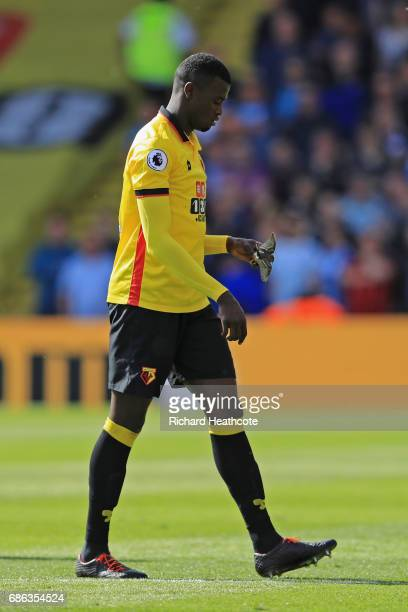 Baye Niang of Watford picks up a bird from the pitch during the Premier League match between Watford and Manchester City at Vicarage Road on May 21...