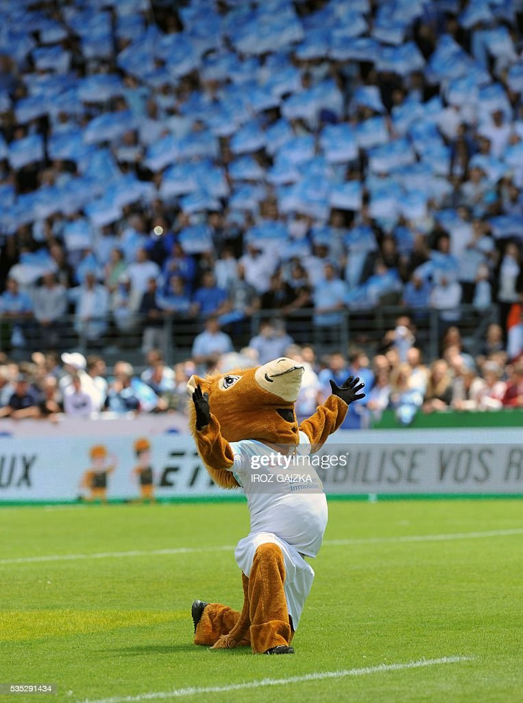 Bayonne's mascot 'Pottoka' gestures before the French Pro D2 semi-final rugby union match between Bayonne and Colomiers at the Jean Dauger stadium on May 29, 2016 in Bayonne, southwestern France. Bayonne defeated Colomiers 28-16. / AFP / IROZ