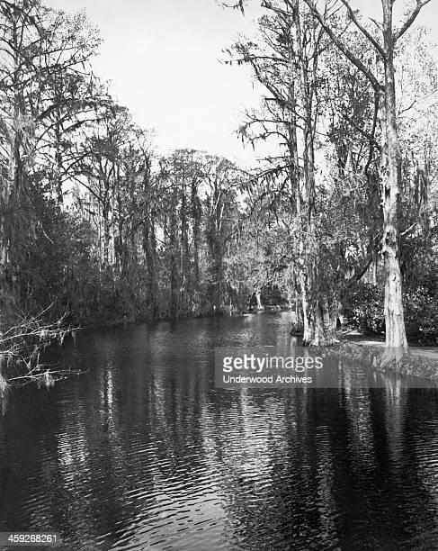 Bayou country in Louisiana Louisiana circa 1925