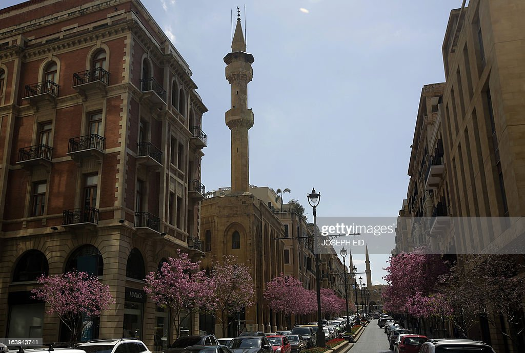 Bblooming trees are seen at a street in the centre of the Lebanese capital Beirut on March 18, 2013.