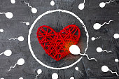 Be the first always and everywhere. Spermatozoon to aim for an egg in the form of a heart 1