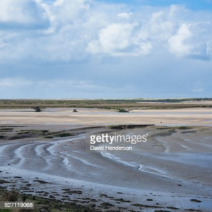 Beach and mudflats : Stock Photo