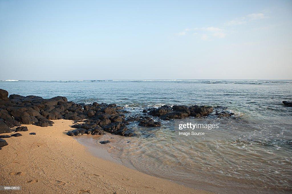 Beach and sea in hawaii : Stock Photo