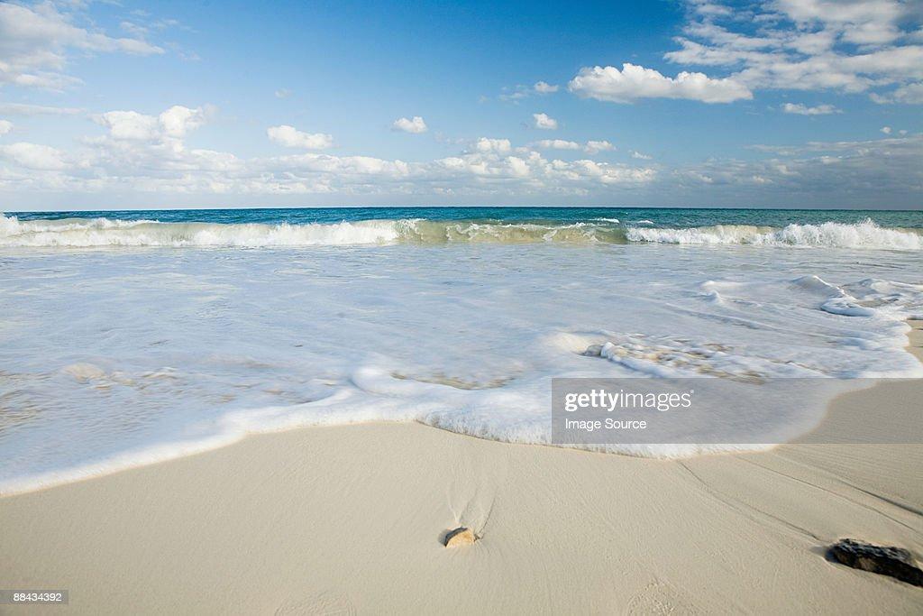 Beach and sea in yucatan : Stock Photo