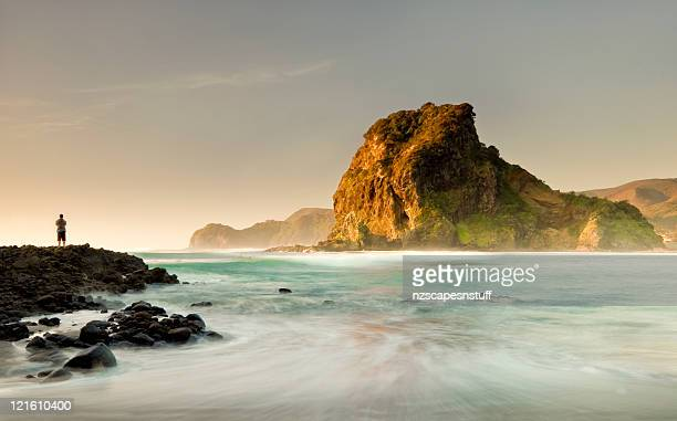 Beach at Piha