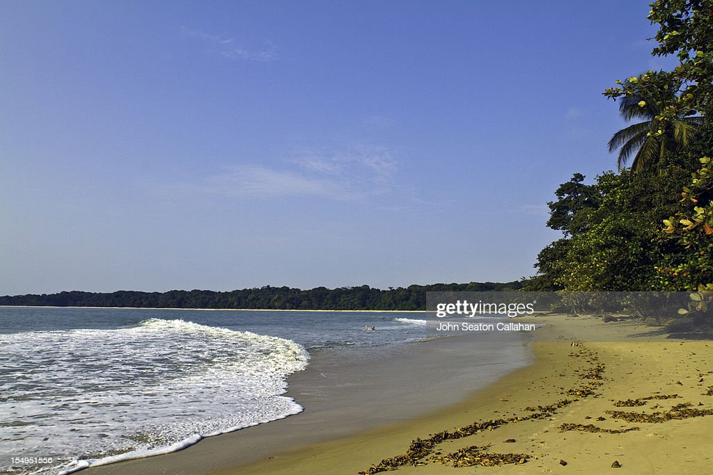 Beach at Pongara National Park, Gabon.