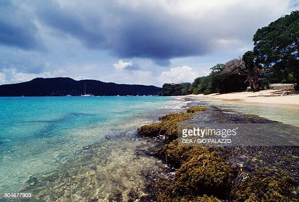 Beach Bequia Island Saint Vincent and the Grenadines
