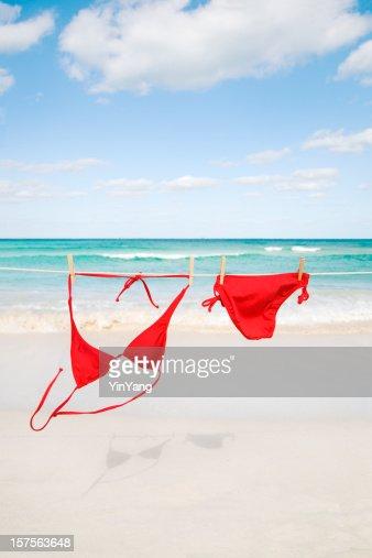 Bikini beach free videos
