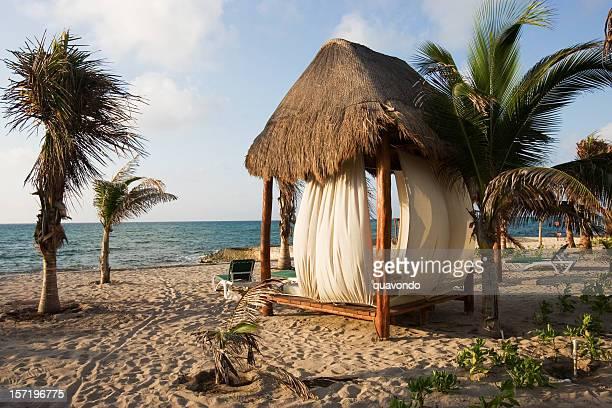 Cabine de plage tropicale avec palmiers et sable