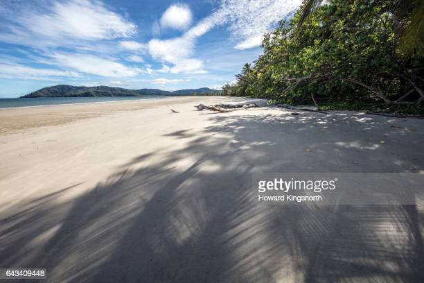 Beach, Cape Tribulation, Daintree National Park