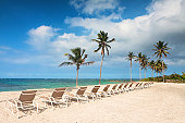 Beach chairs and palm trees