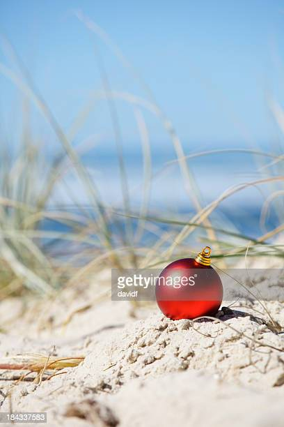 Beach Christmas Decoration
