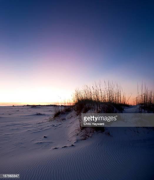 Dunas de praia ao pôr do sol