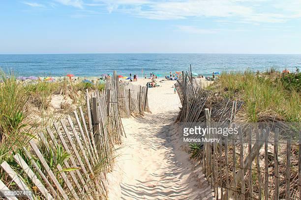 Beach entrance on the dunes