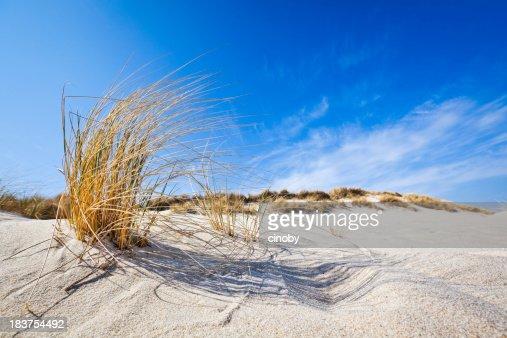 Beach Feelings - Ellenbogen ( Sylt )
