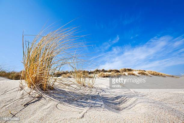 Beach Feelings - Ellenbogen ( Sylt )