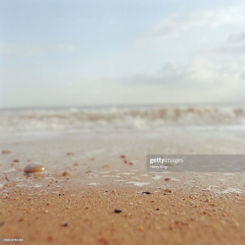 Beach, ground view : Stock Photo