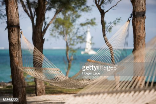hindu single men in gulf hammock One bag wanderer the wanderlust  many of these men died,  an absolutely beautiful sanctuary that's home to several hindu temples and hundreds of macaques:.