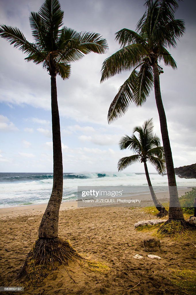 Beach holidays in indian ocean : Photo