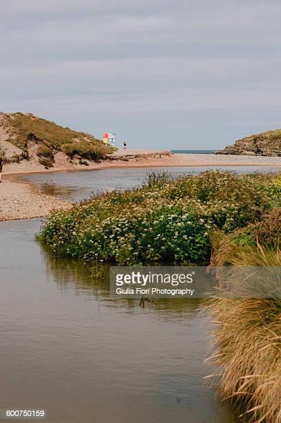 Beach in Gwithian, Cornwall