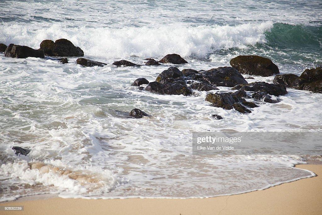 Beach in Hawaii : Stock Photo
