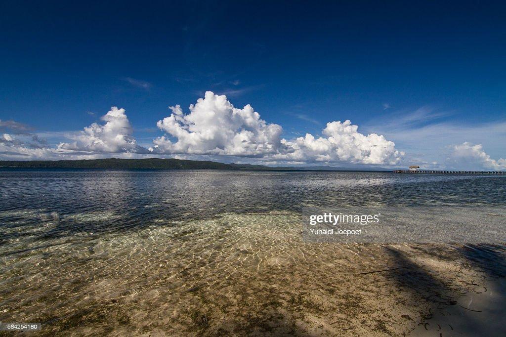 Beach in Raja Ampat Islands, West Papua, Indonesia